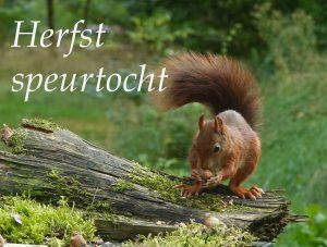 Download Speurtocht